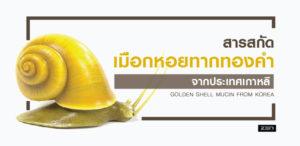 สารสกัดจากเมือกหอยทากทองคำประเทศเกาหลี (Golden Shell Mucin from Korea)