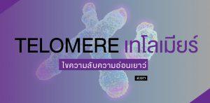ไขความลับสู่ความอ่อนเยาว์ ด้วยการพัฒนาดีเอ็นเอ ส่วน TELOMERE เทโลเมียร์