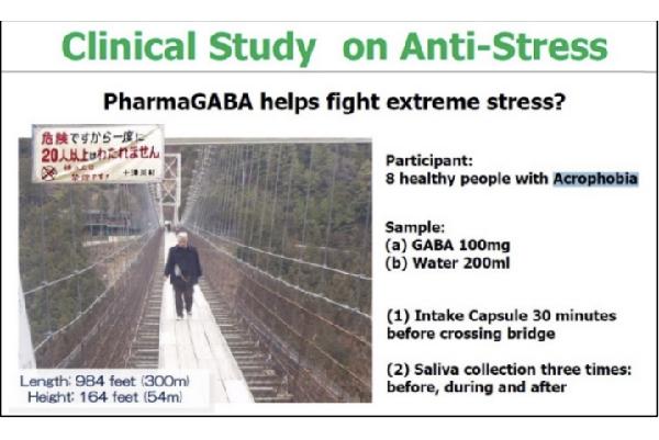 สารสกัดจาก PharmaGABA Ant0 Stress